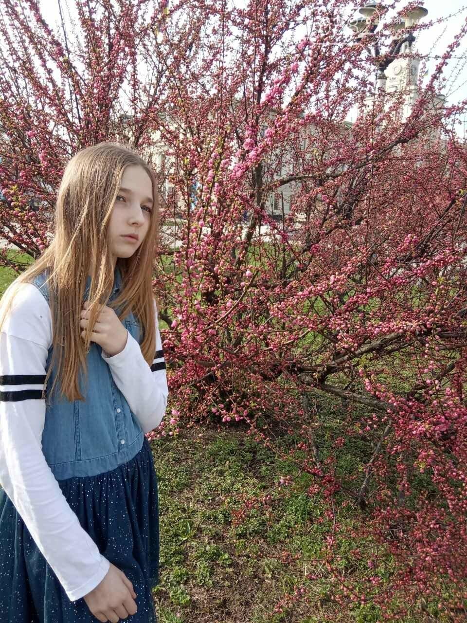 Ти ще не тут? У центрі Хмельницького розцвіли сакури (фото), фото-7