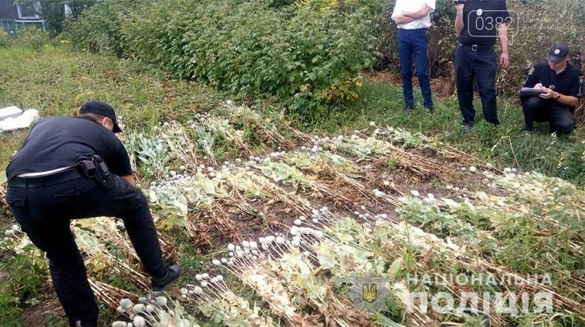 На Хмельниччині поліцейські виявили більше 800 кущів маку (фото), фото-2