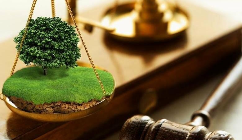 На Хмельниччині скасовано рішення про передачу в приватну власність землі вартістю 1,6 млн грн
