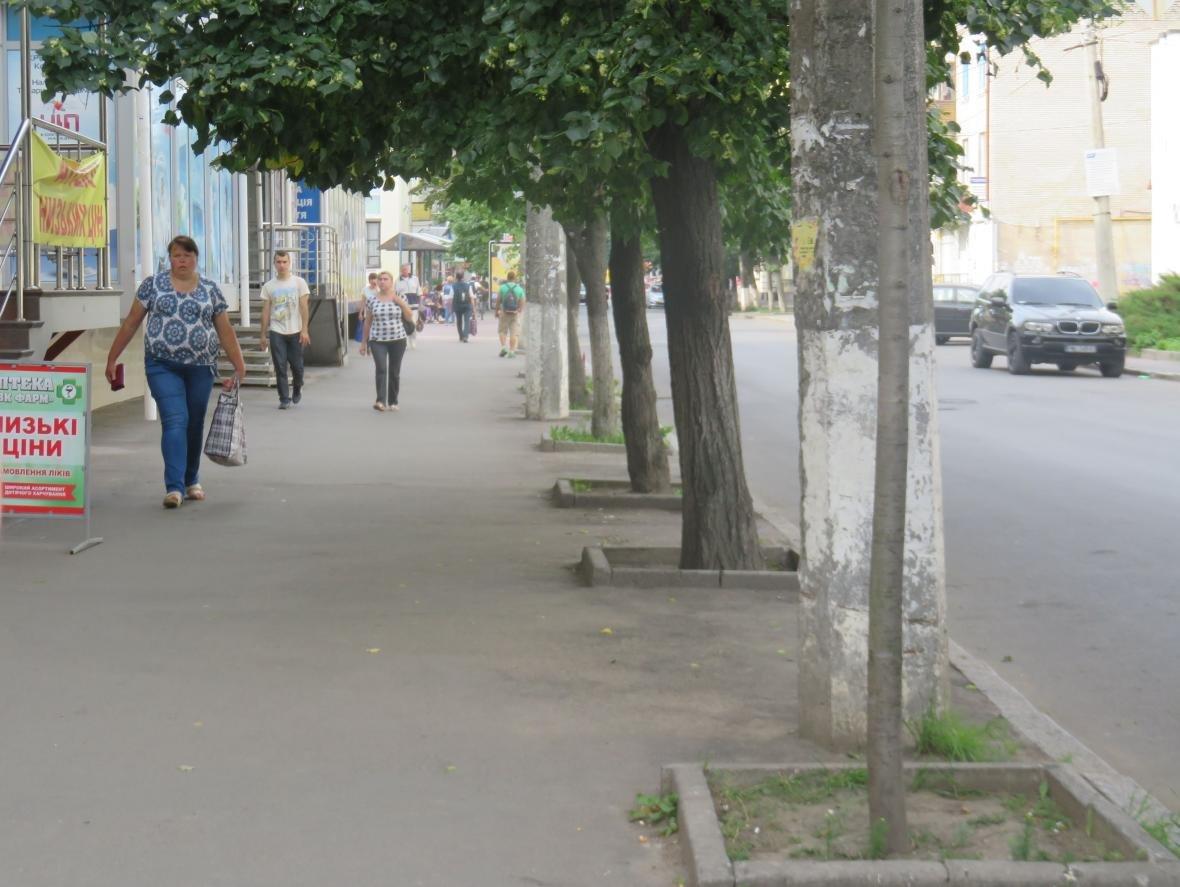 У центрі Хмельницького демонтували зовнішню рекламу (ФОТО), фото-4