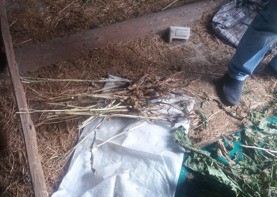 На Хмельниччині поліцейські виявили «міні-нарколабораторію» (ФОТО), фото-1