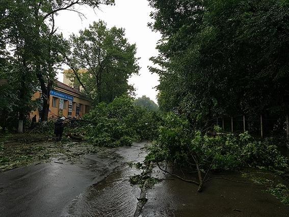 Негода: на Хмельниччині знеструмлені 35 населених пунктів, розтрощені авто, затоплені вулиці, фото-4