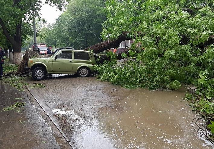 Негода: на Хмельниччині знеструмлені 35 населених пунктів, розтрощені авто, затоплені вулиці, фото-6