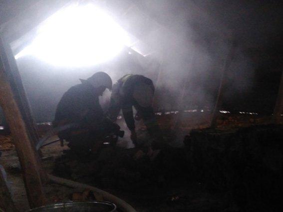 На території Хмельницької області за минулу добу вогнеборці ліквідували чотири пожежі, фото-2