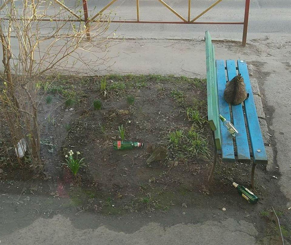 Весна прийшла: на дитячих майданчиках у Хмельницькому побільшало випивак. ФОТО, фото-2