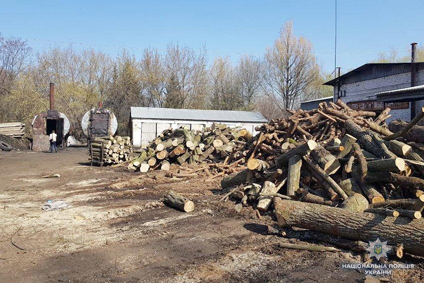 Хмельничани потерпали від смогу, поки ділки на експорт випалювали вугілля. ВІДЕО, фото-1