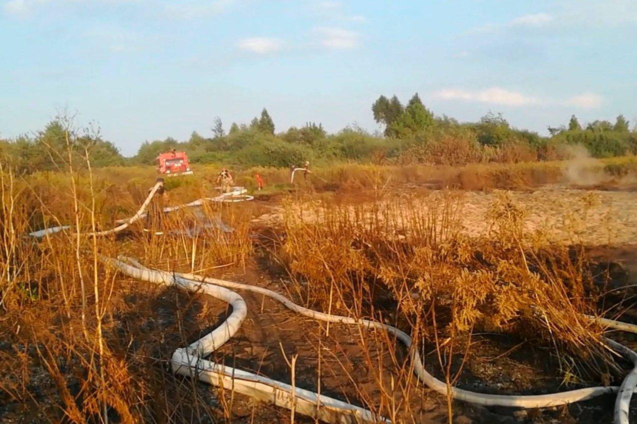 Хмельницька область: рятувальники ліквідували пожежу торфу, фото-2