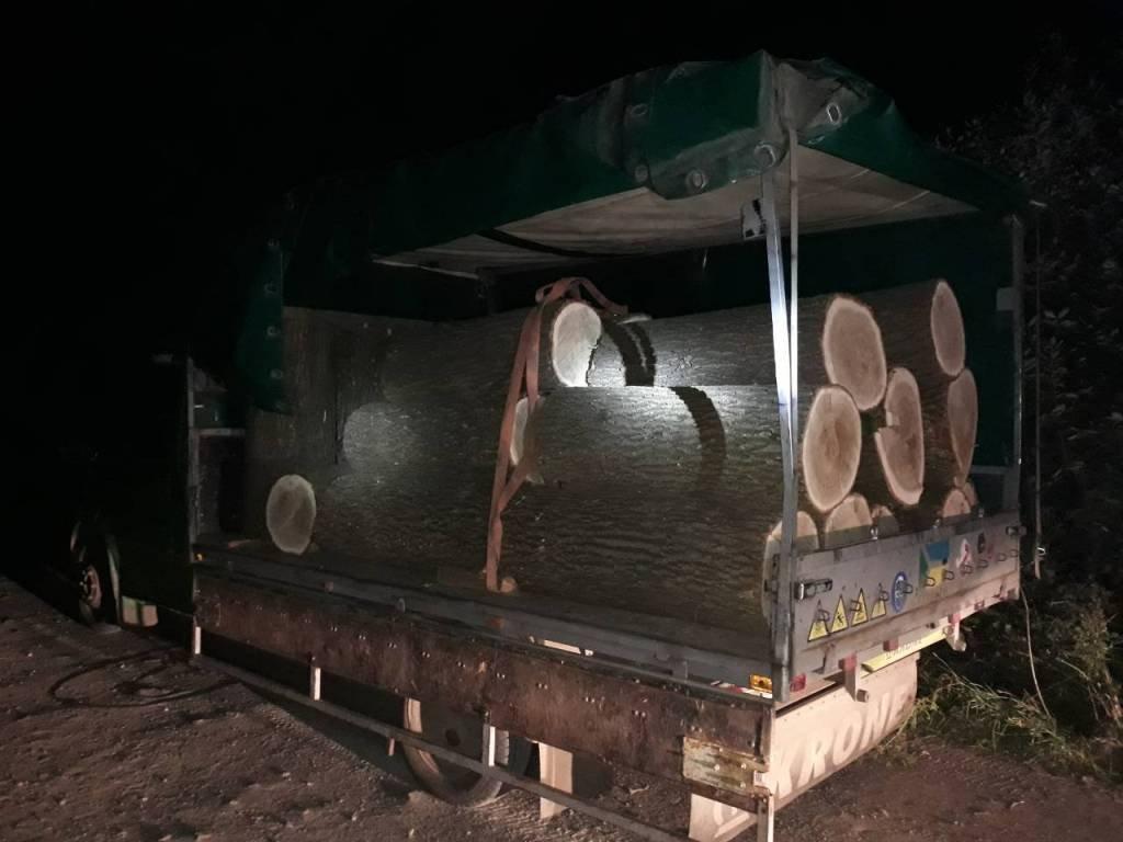 Поблизу Хмельницького виявили факт незаконної рубки лісу, фото-3