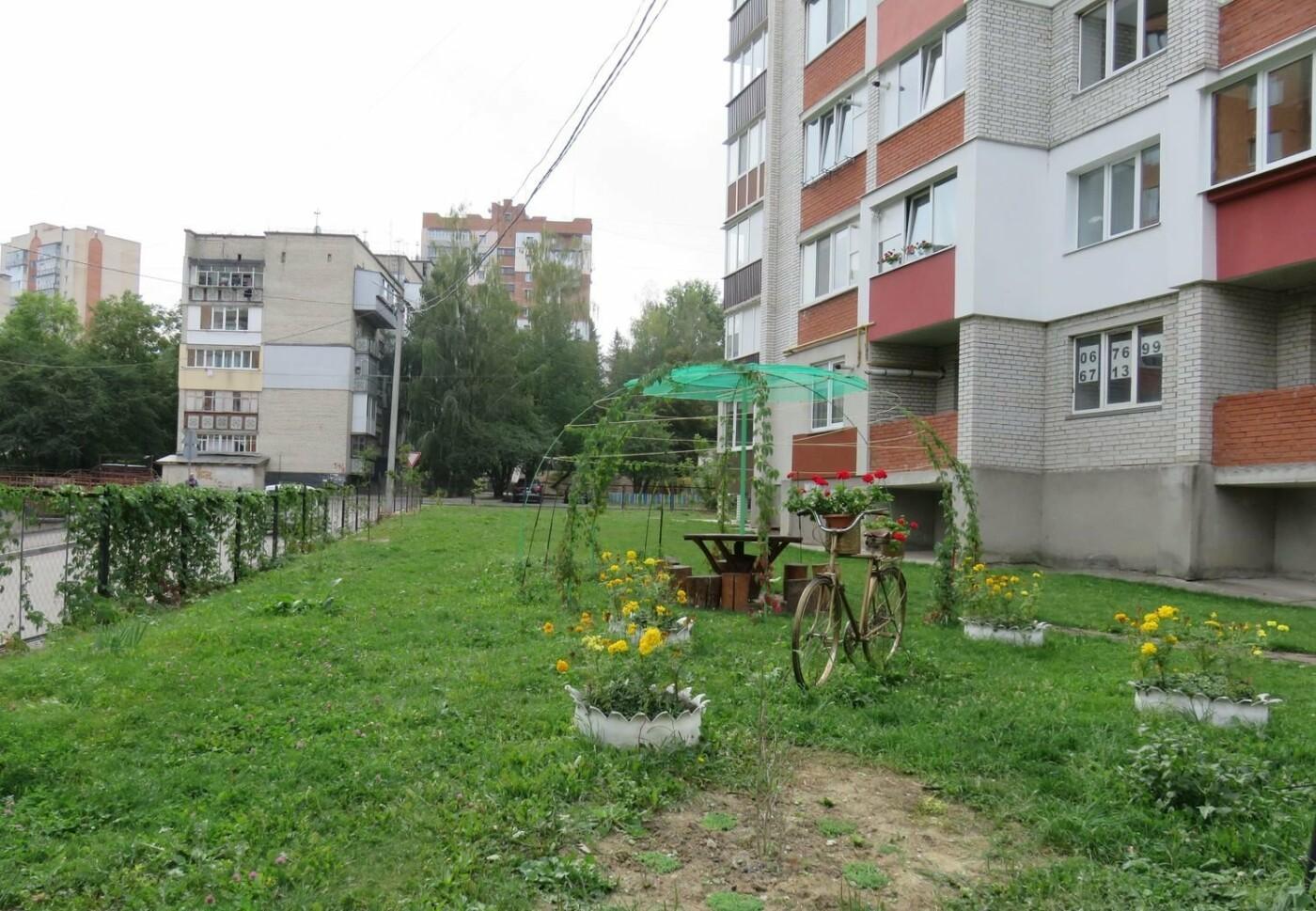 З'явилися світлини найкрасивіших будинків та вулиць Хмельницького, фото-12