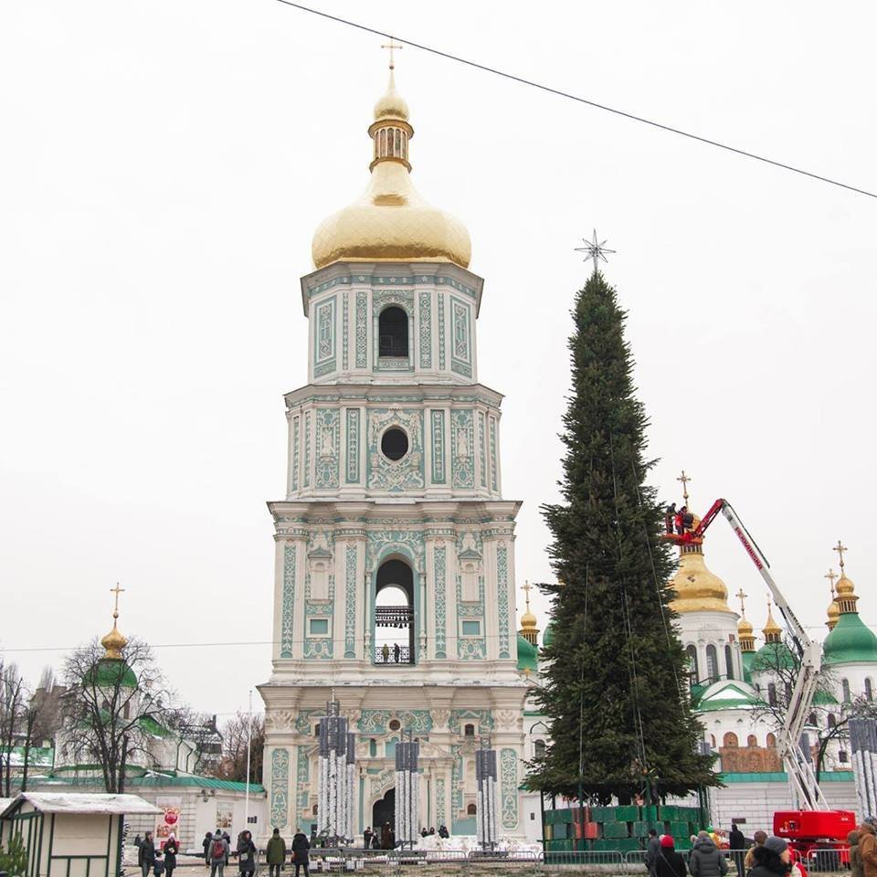 Найбільша подільська красуня з'явилась у столиці. ФОТО, фото-1