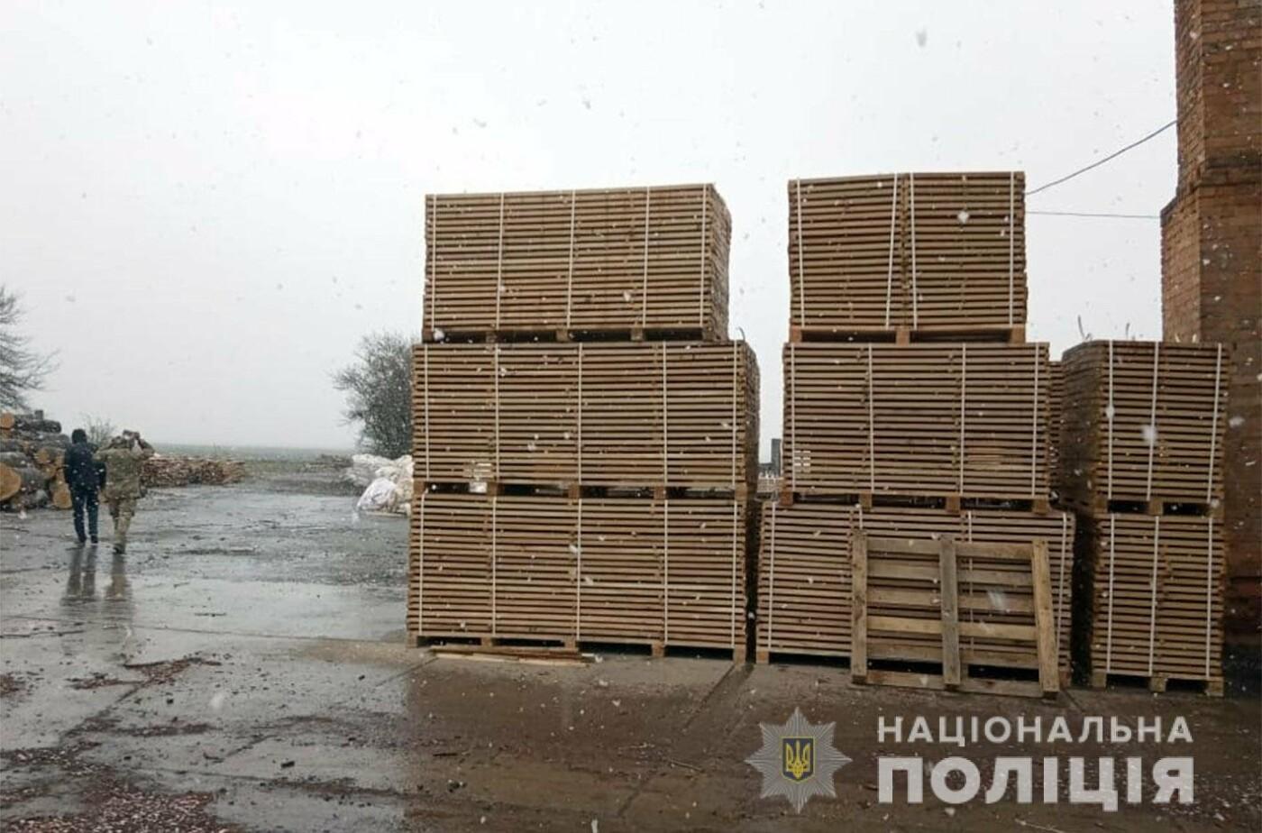 На Хмельниччині посадовці лісгоспу розкрадали ліс, фото-3