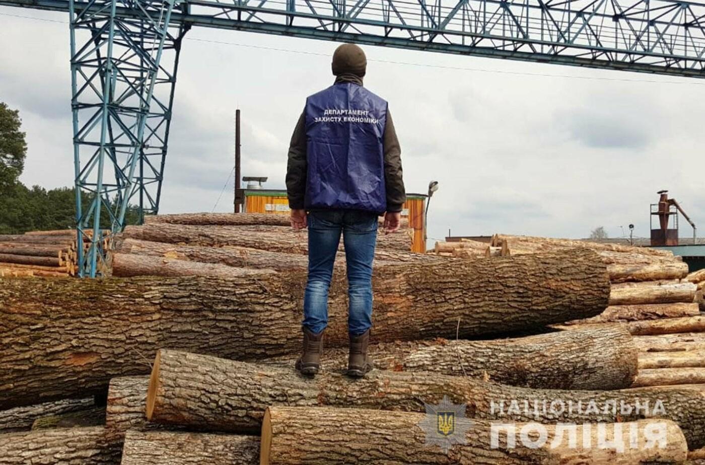 На Хмельниччині посадовці лісгоспу розкрадали ліс, фото-4