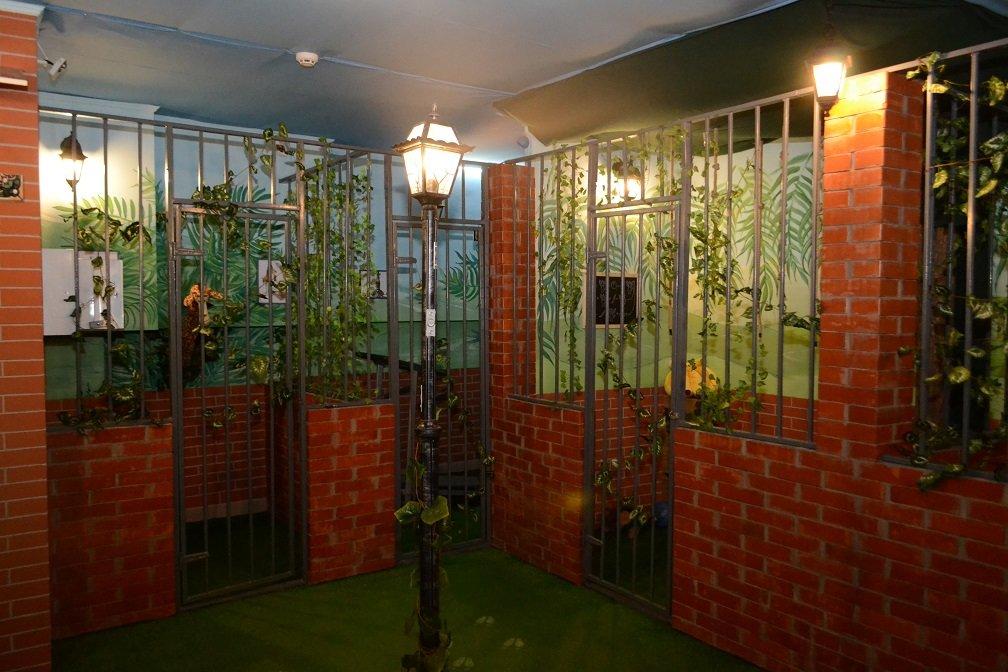"""Опинись на Мадагаскарі: У Хмельницькому відкрилась квест-кімната """"Замкнені"""", фото-7"""