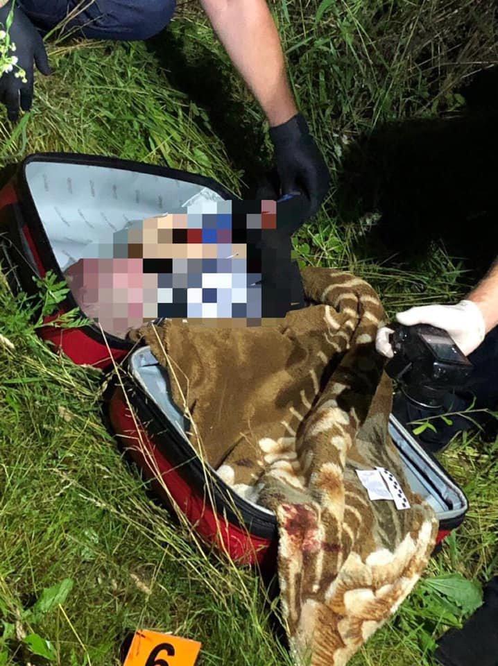 Хлопчик у валізі: новий поворот в жахливому злочині (відео, фото 18+), фото-4
