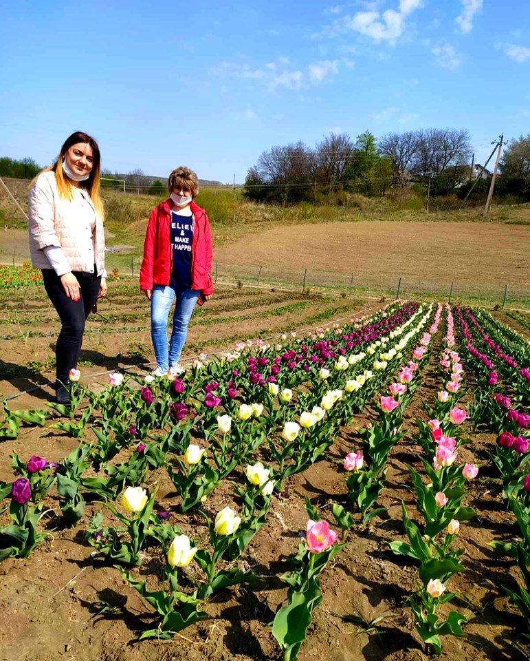 На Хмельниччині з'явилася квіткова долина (фото), фото-1
