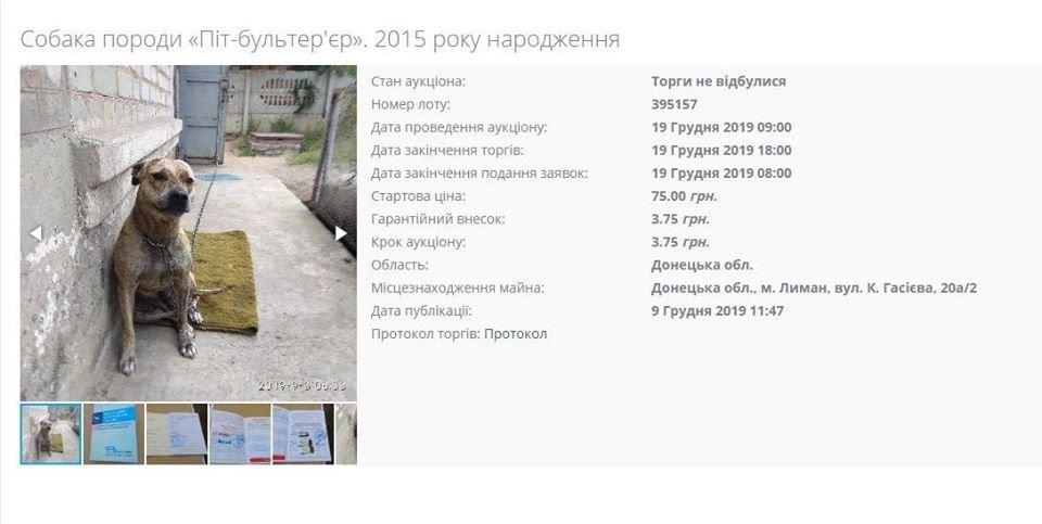 Міністерство юстиції продає собак: тварин конфіскували за борги, фото-1