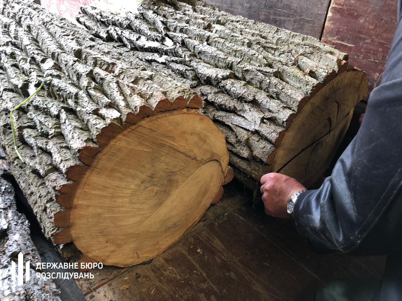 Хабар та незаконна вирубка і збут деревини – хмельницькі правоохоронці затримали прикордонника, фото-3